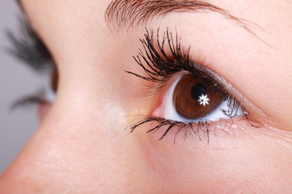 Oczy to nietypowy organ. To dokładnie dzięki nim widzimy.